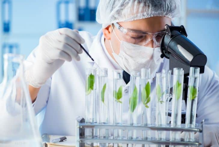 Biotechnology Student Internships